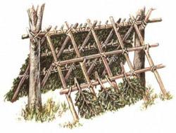 Строительство укрытий в зависимости от типа местности особенности выживания